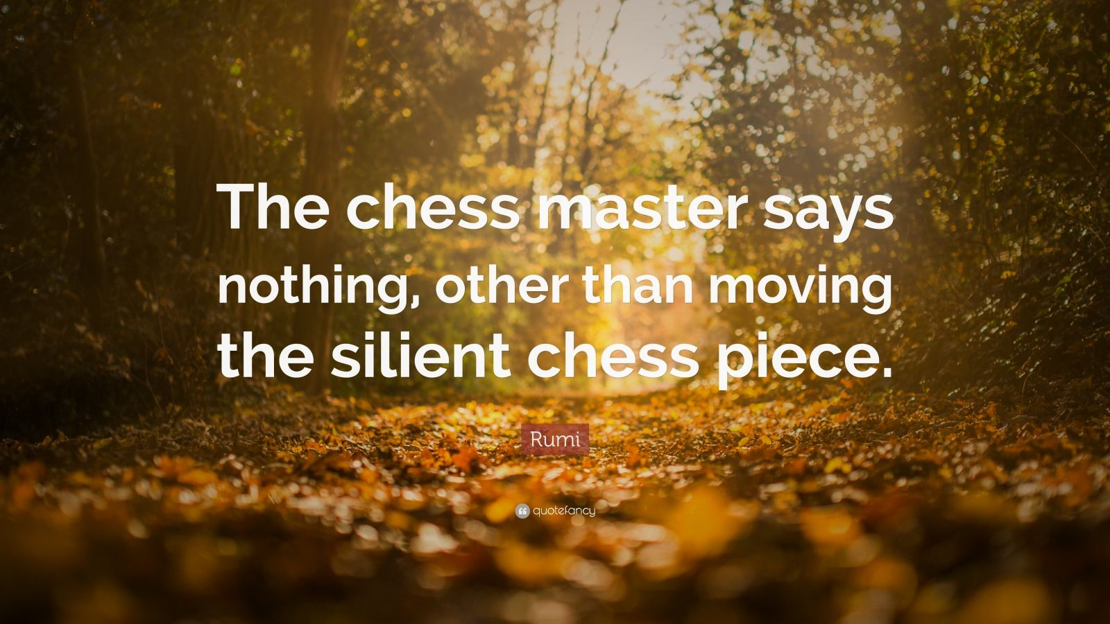 """Rumi Quote: """"The chess master says nothing, other than moving the silient chess piece."""""""