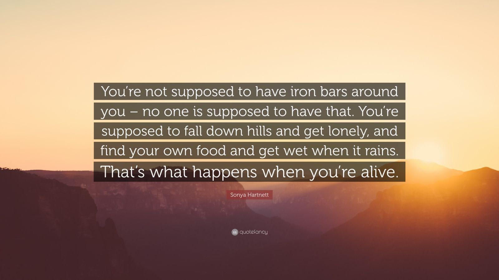"""Sonya Hartnett Quote: """"You're not supposed to have iron bars around you – no one is supposed to have that. You're supposed to fall down hills and get lonely, and find your own food and get wet when it rains. That's what happens when you're alive."""""""