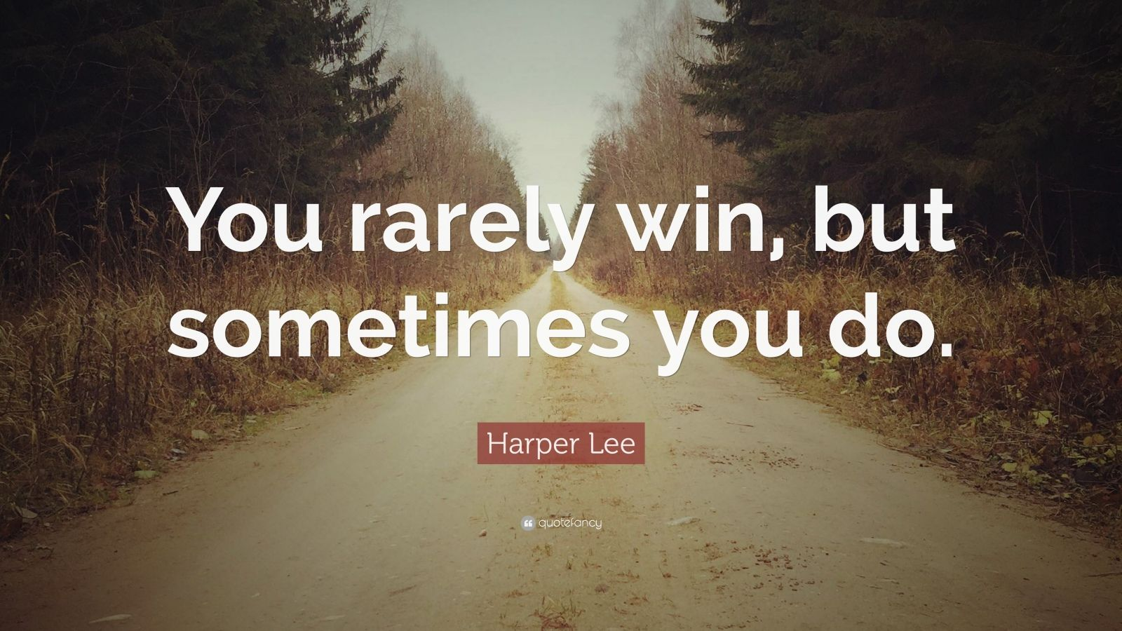 themes and issues of harper lees Harper lee harper lee was born on april 28, 1926 in monroeville, alabama she is best known for her 1961 pulitzer-prize-winning novel to kill a mockingbird.