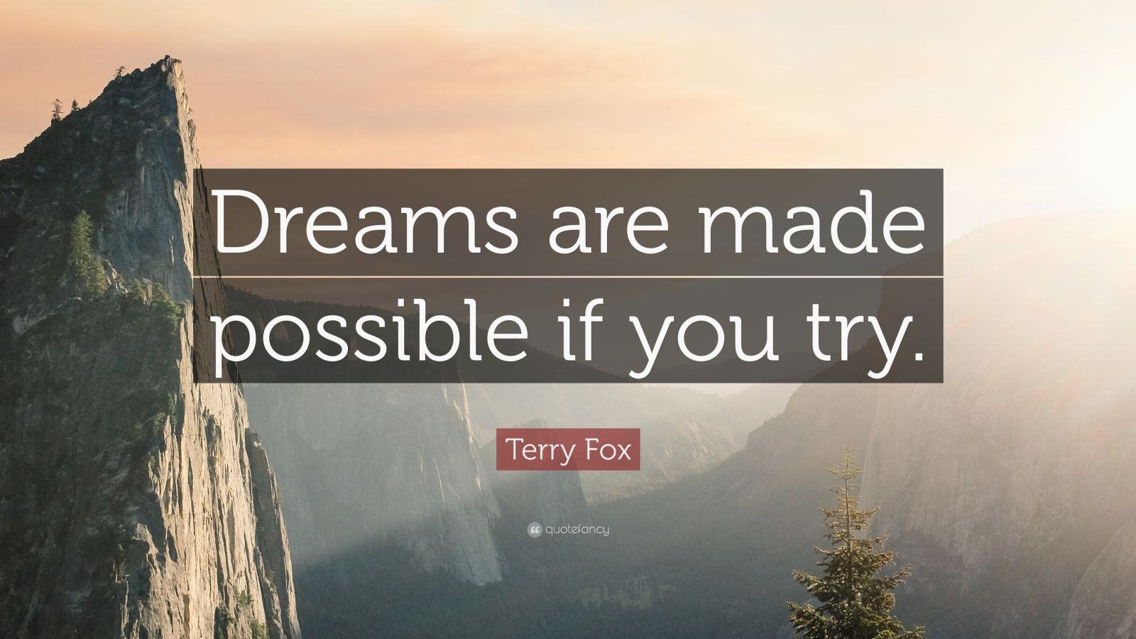 "Quotes On Courage And Strength Terry Fox Quote: ""Dr..."