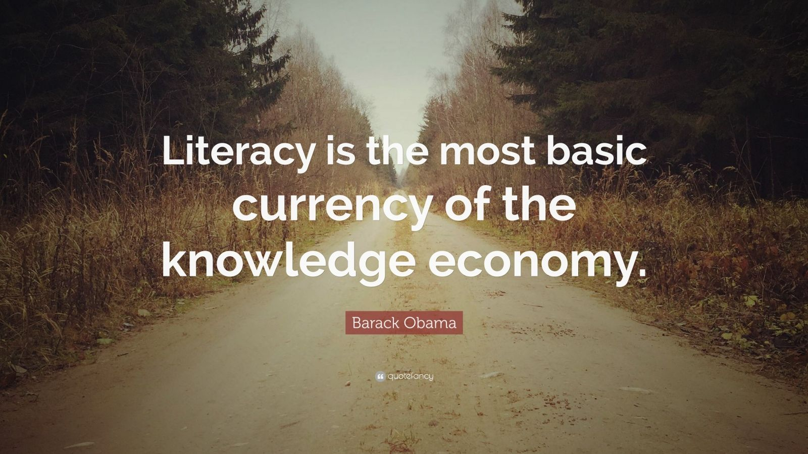 "Barack Obama Quote: ""Literacy is the most basic currency of the knowledge economy."""