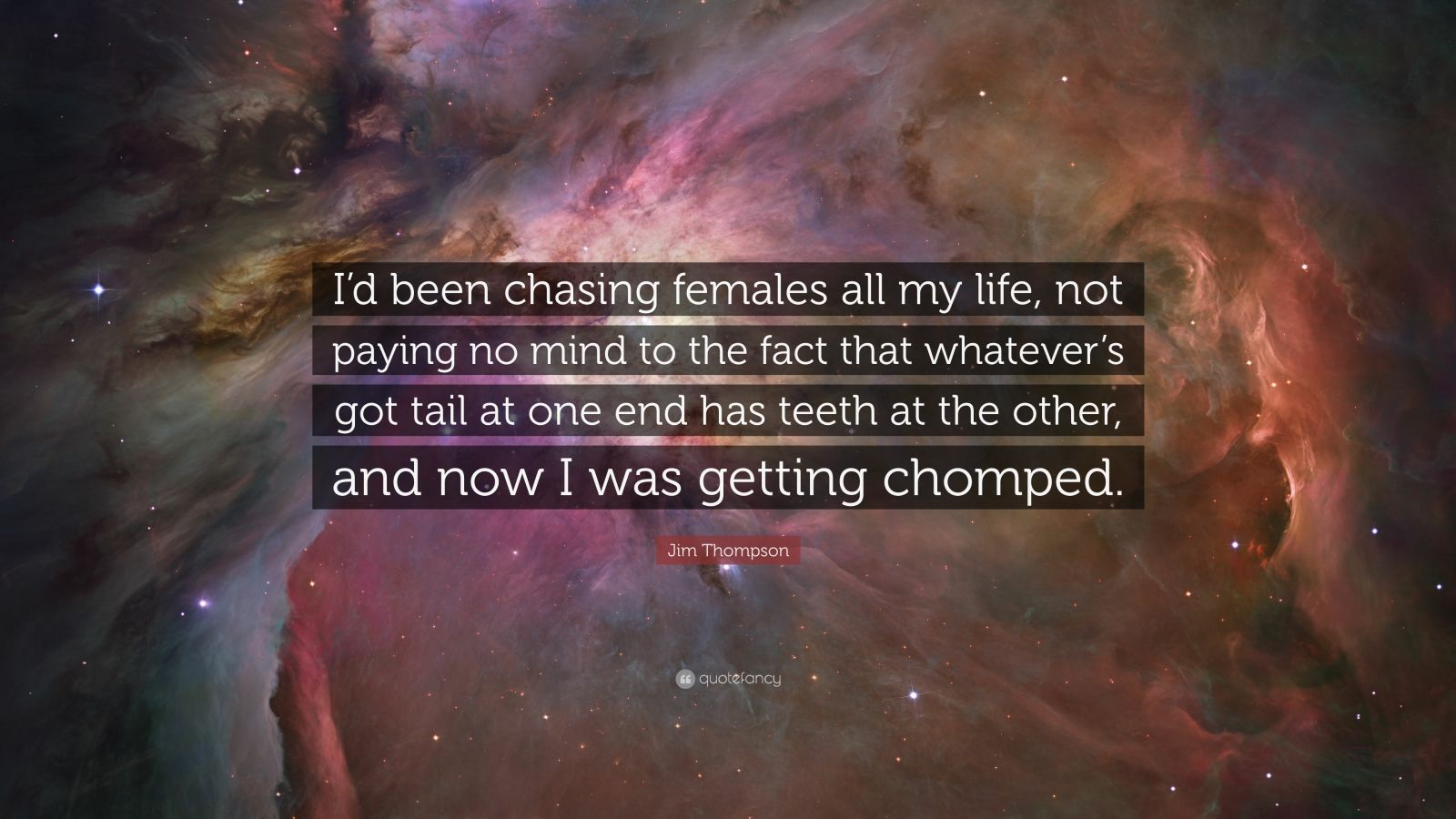 "Jim Thompson Quote: ""I'd been chasing females all my life, not paying no mind to the fact that whatever's got tail at one end has teeth at the other, and now I was getting chomped."""