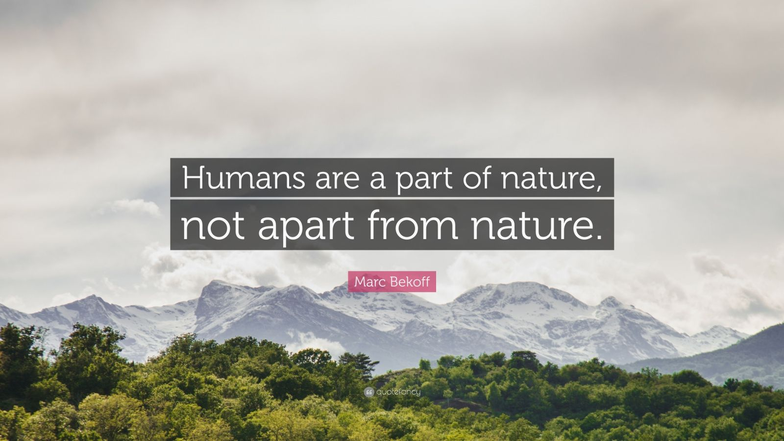 man is a part of nature not apart from it essay We are an intrinsic part of nature, not separate from anything else: buddhism & the environment design living science technology transportation business.