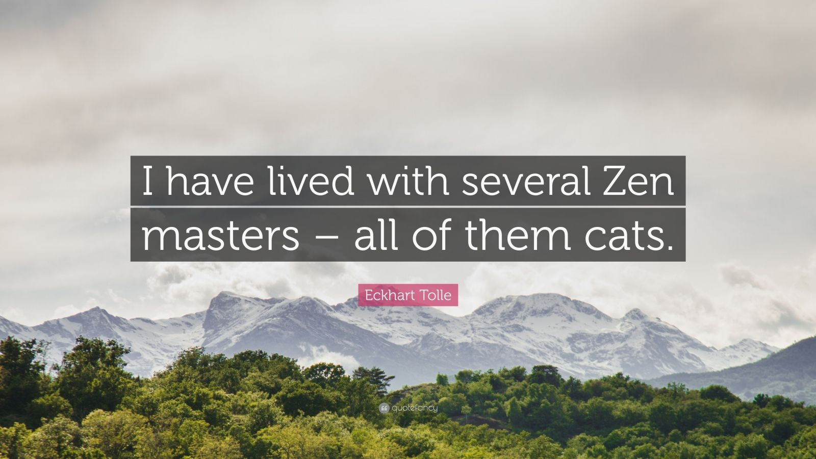 """Eckhart Tolle Quote: """"I have lived with several Zen masters – all of them cats."""""""