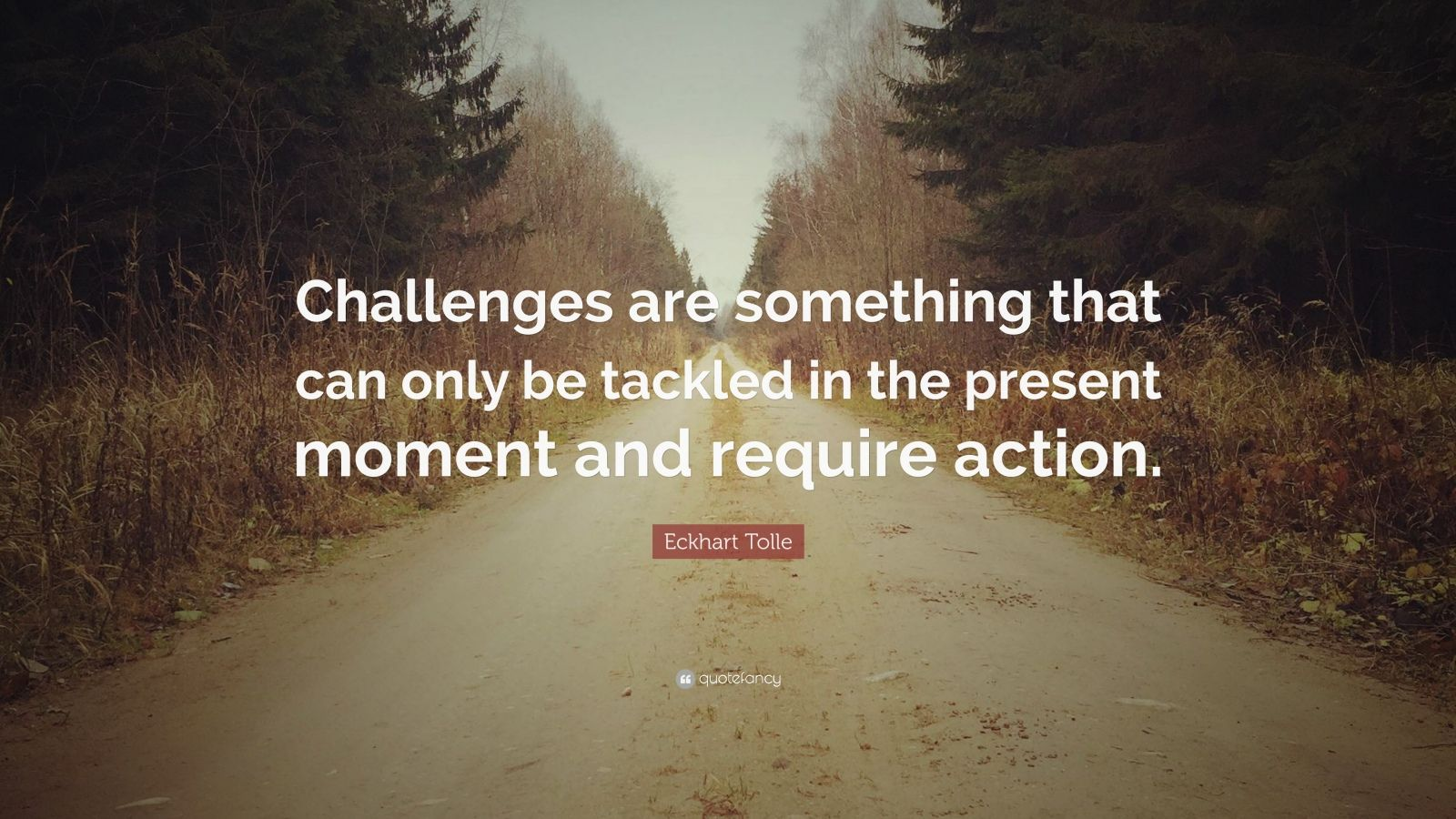 """Eckhart Tolle Quote: """"Challenges are something that can only be tackled in the present moment and require action."""""""