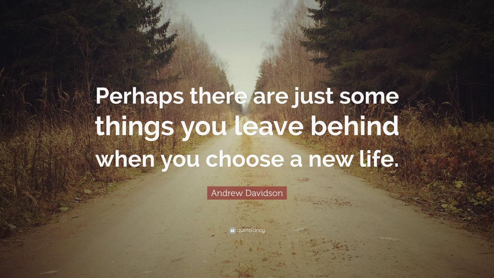 "Andrew Davidson Quote: ""Perhaps there are just some things you leave behind w..."