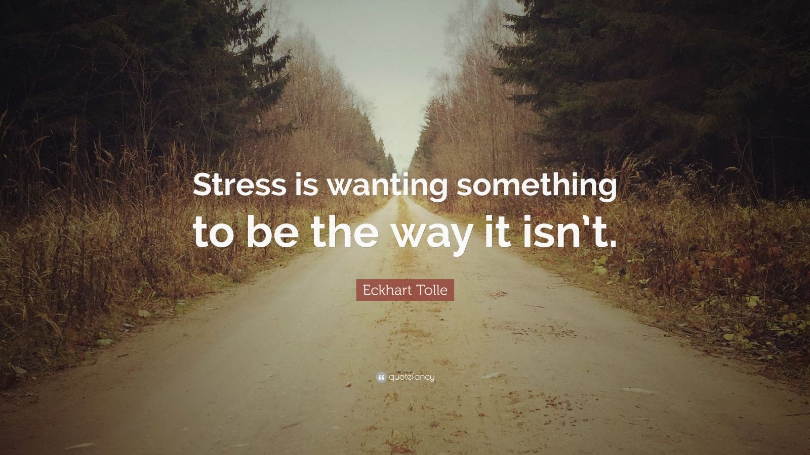 """Eckhart Tolle Quote: """"Stress is wanting something to be the way it isn't."""""""