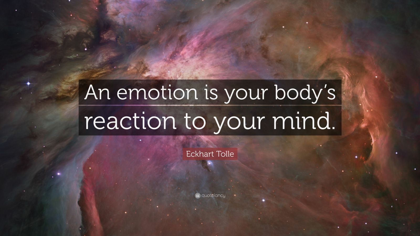 """Eckhart Tolle Quote: """"An emotion is your body's reaction to your mind."""""""