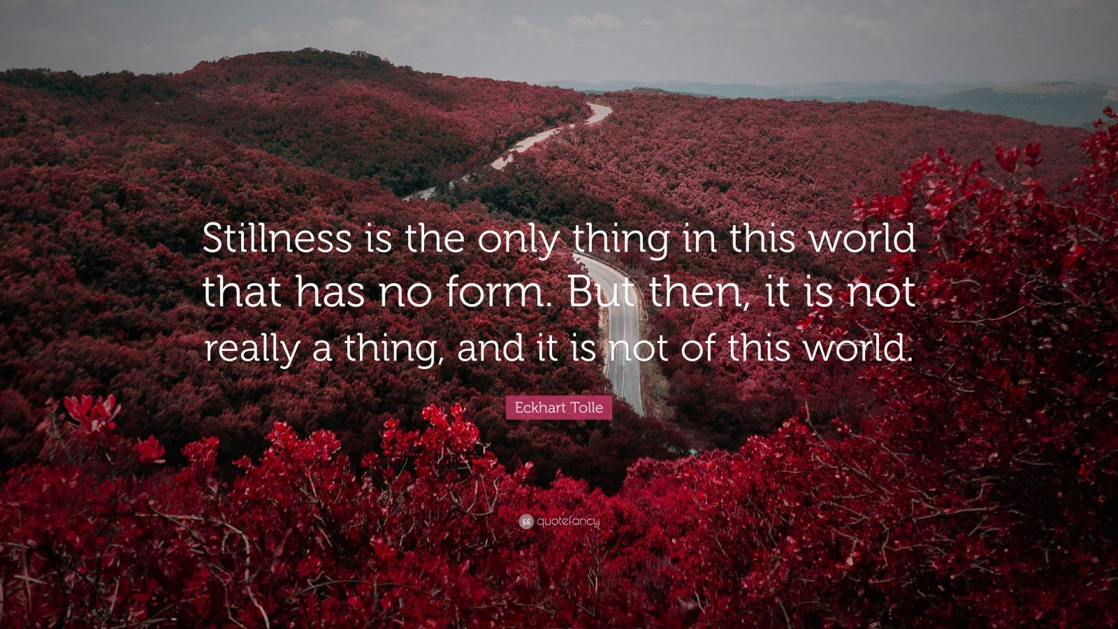 "Eckhart Tolle Quote: ""Stillness is the only thing in this world that has no form. But then, it is not really a thing, and it is not of this world."""
