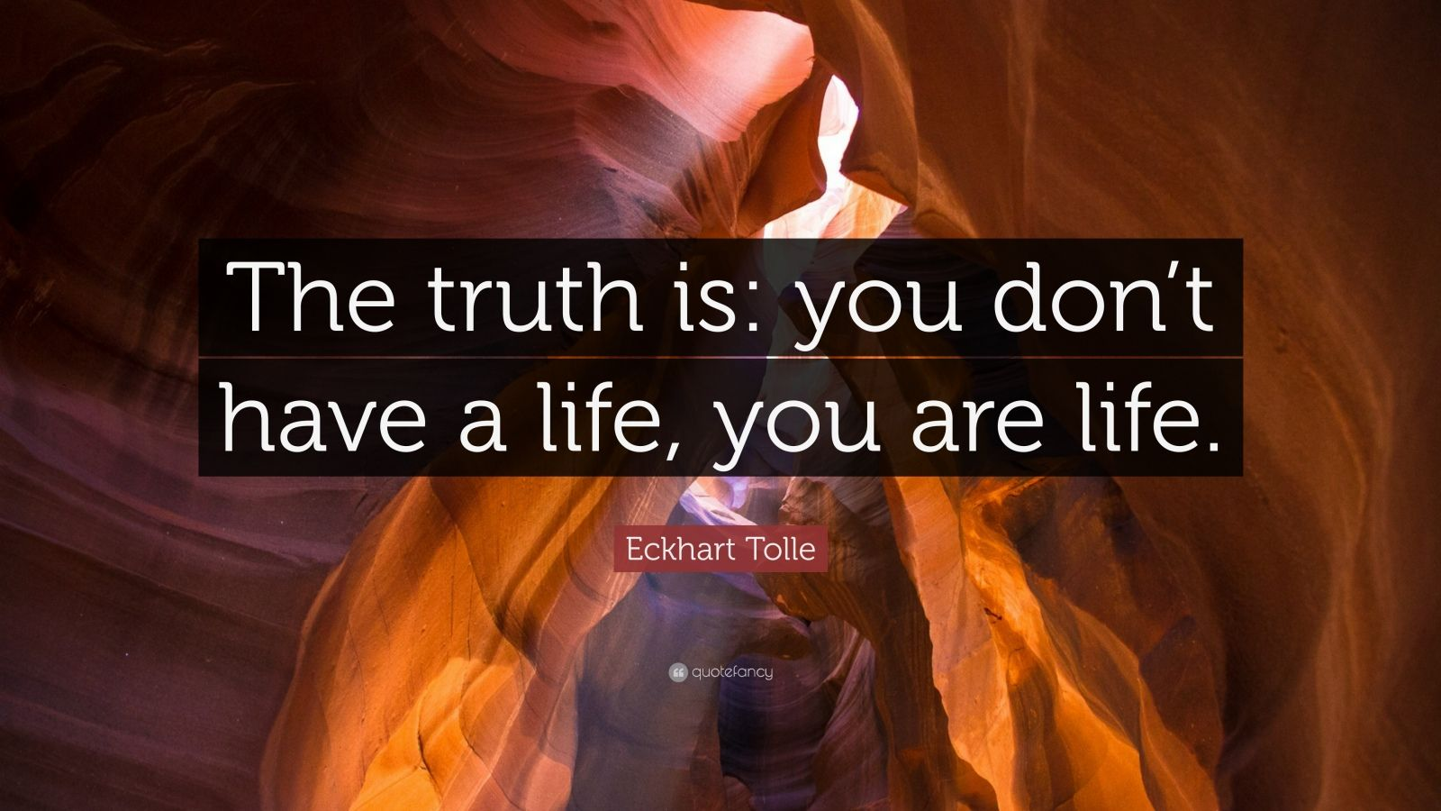 "Eckhart Tolle Quote: ""The truth is: you don't have a life, you are life."""