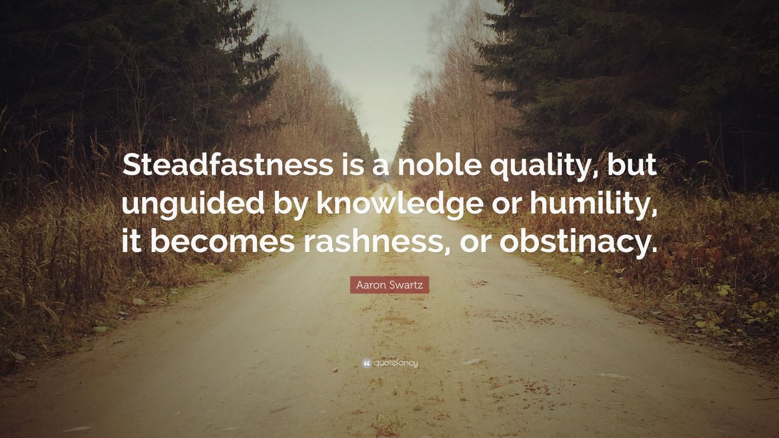 "Aaron Swartz Quote: ""Steadfastness is a noble quality, but unguided by knowledge or humility, it becomes rashness, or obstinacy."""
