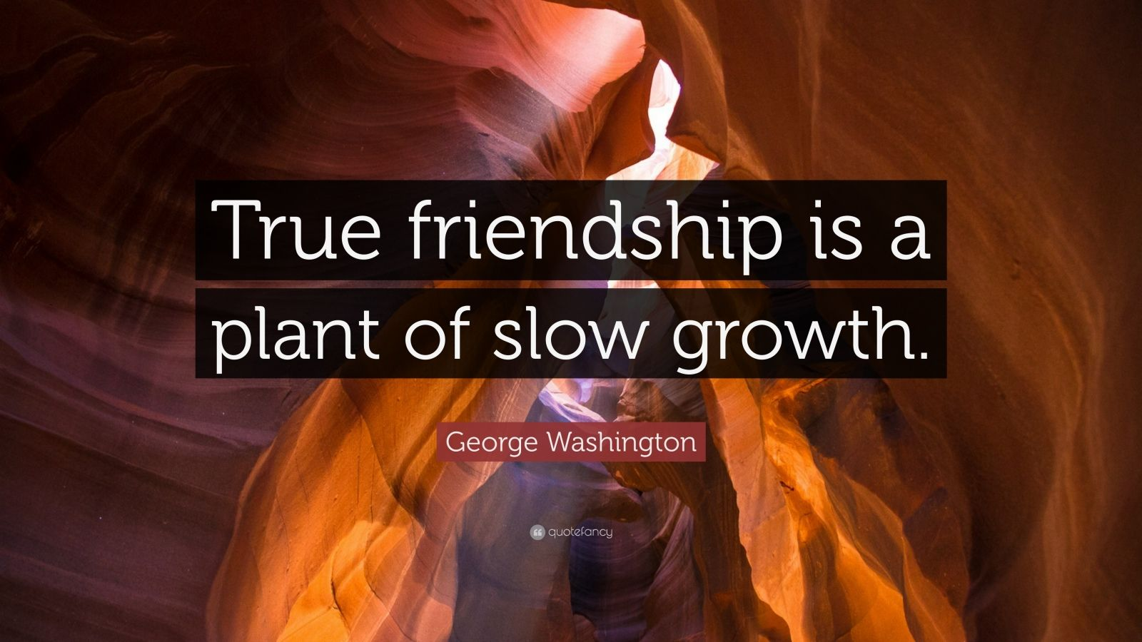 """George Washington Quote: """"True friendship is a plant of slow growth."""""""