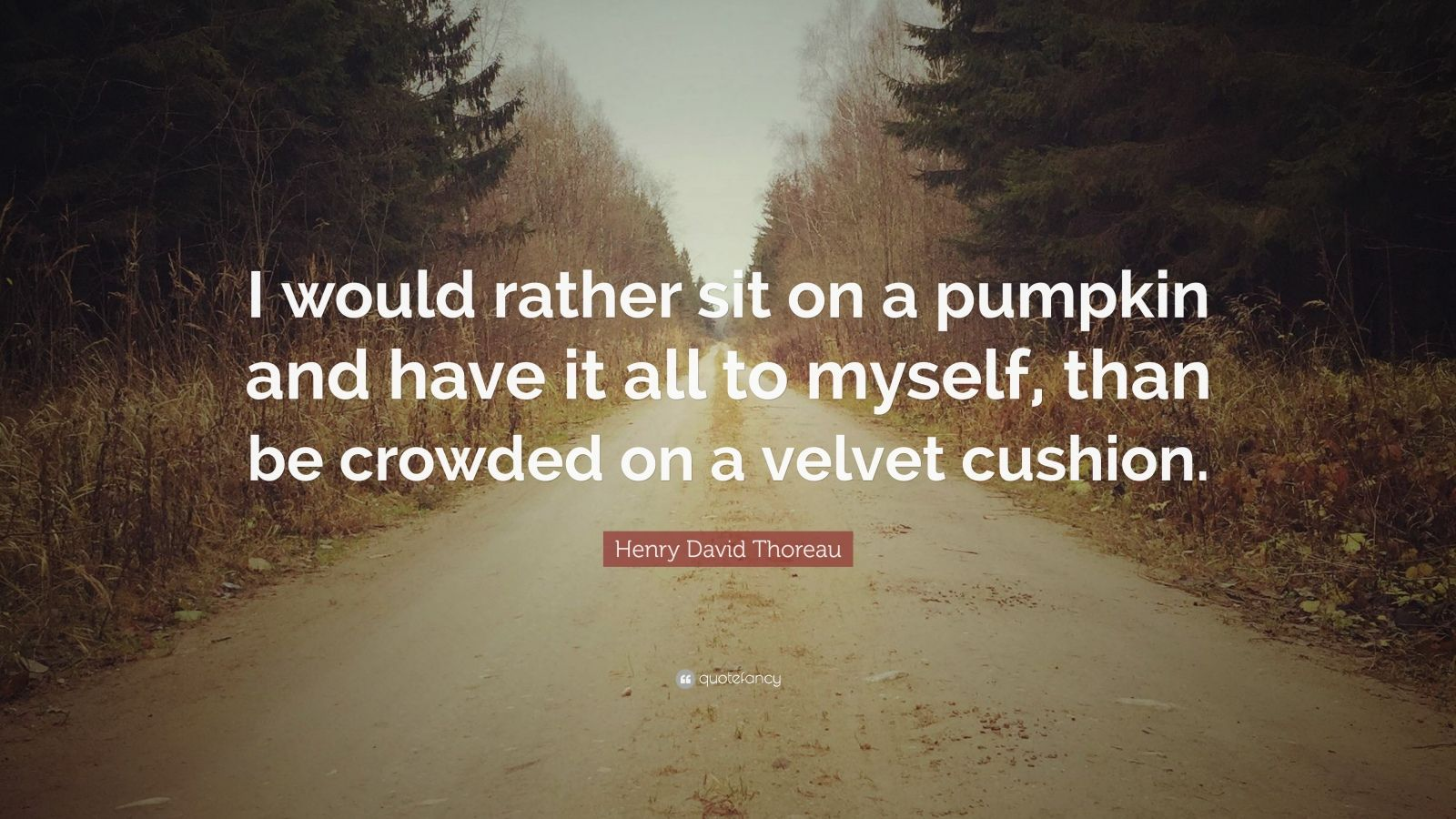"""Henry David Thoreau Quote: """"I would rather sit on a pumpkin and have it all to myself, than be crowded on a velvet cushion."""""""