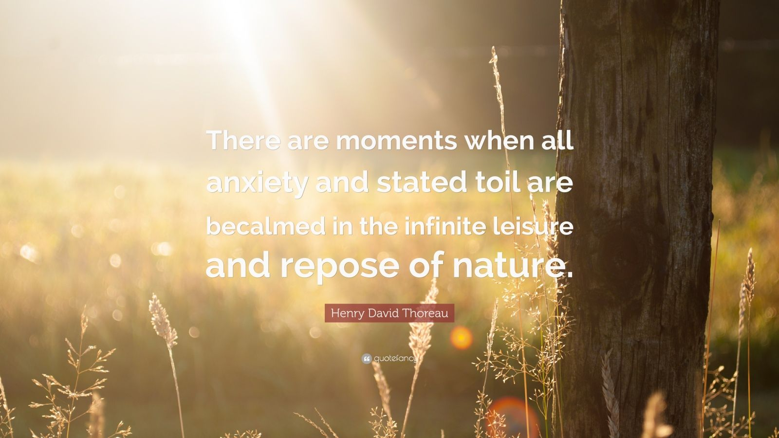"""Henry David Thoreau Quote: """"There are moments when all anxiety and stated toil are becalmed in the infinite leisure and repose of nature."""""""