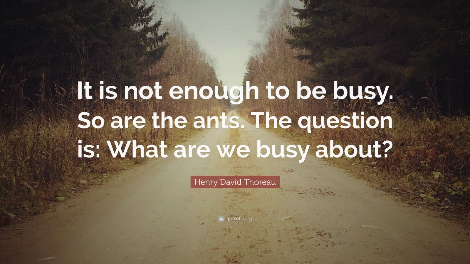 "Henry David Thoreau Quote: ""It is not enough to be busy. So are the ants. The question is: What are we busy about?"""