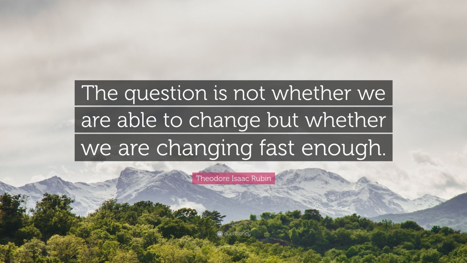 "Theodore Isaac Rubin Quote: ""The question is not whether we are able to change but whether we are changing fast enough."""