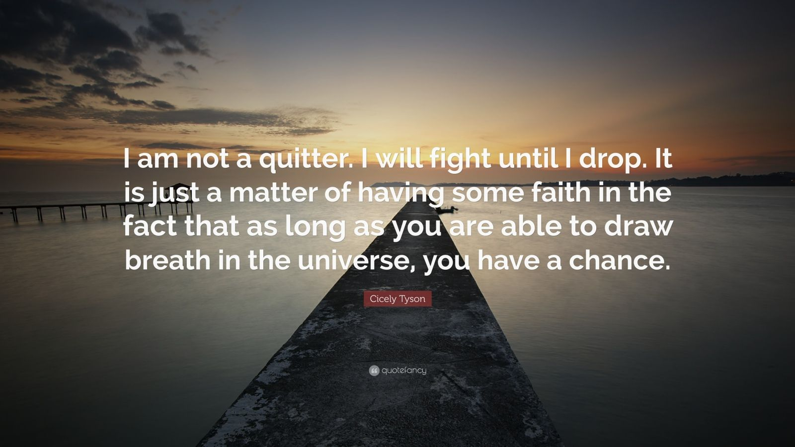 """Cicely Tyson Quote: """"I am not a quitter. I will fight until I drop. It is just a matter of having some faith in the fact that as long as you are able to draw breath in the universe, you have a chance."""""""