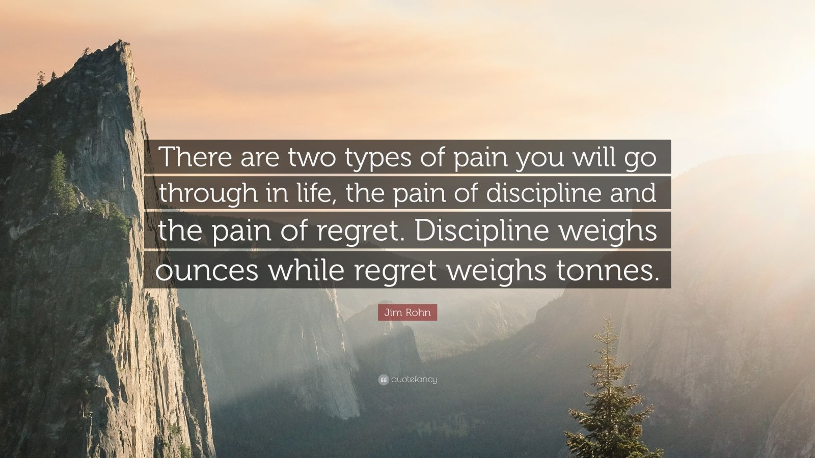"Jim Rohn Quote: ""There are two types of pain you will go through in life, the pain of discipline and the pain of regret.  Discipline weighs ounces while regret weighs tonnes."""