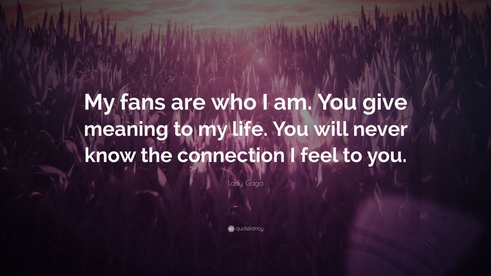 "Lady Gaga Quote: ""My fans are who I am. You give meaning to my life. You will never know the connection I feel to you."""