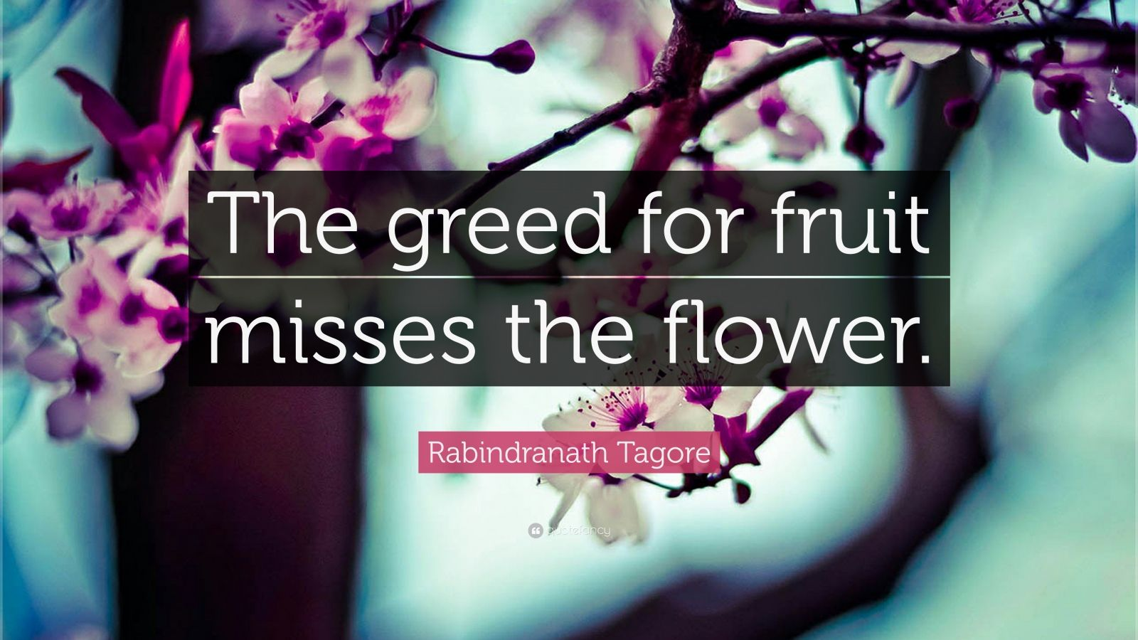 "Rabindranath Tagore Quote: ""The greed for fruit misses the flower."""