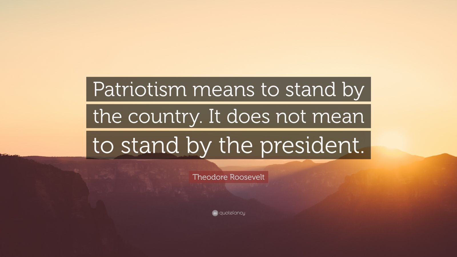 """Theodore Roosevelt Quote: """"Patriotism means to stand by ..."""