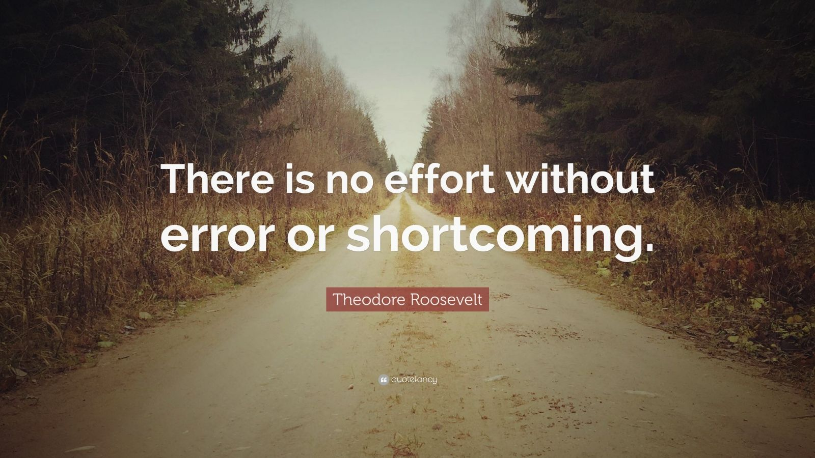 "Theodore Roosevelt Quote: ""There is no effort without error or shortcoming."""