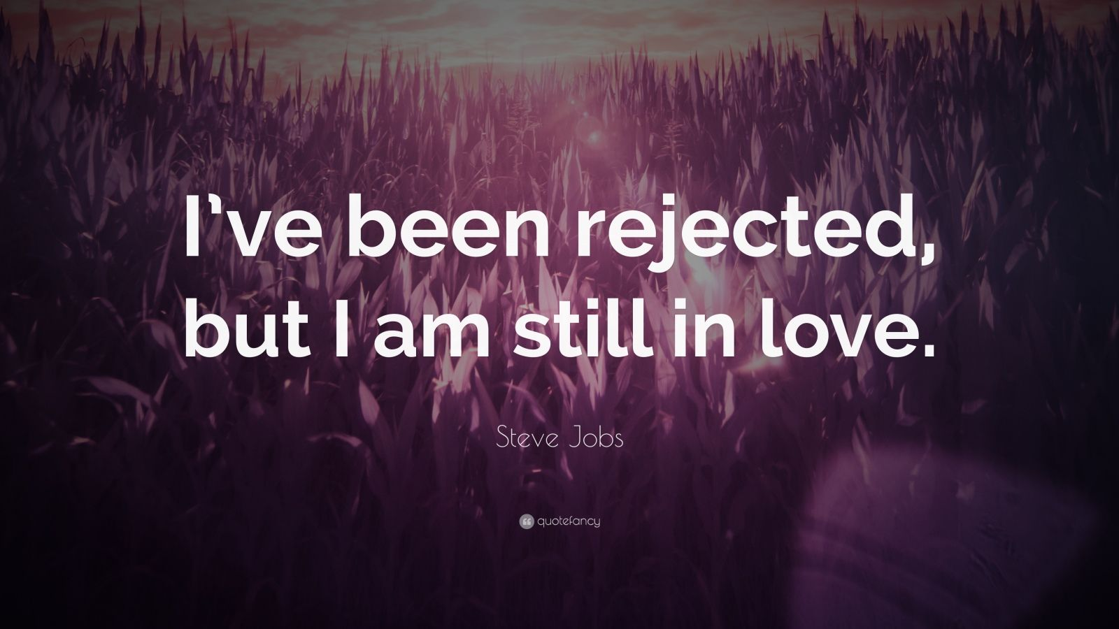 "Steve Jobs Quote: ""I've been rejected, but I am still in love."""