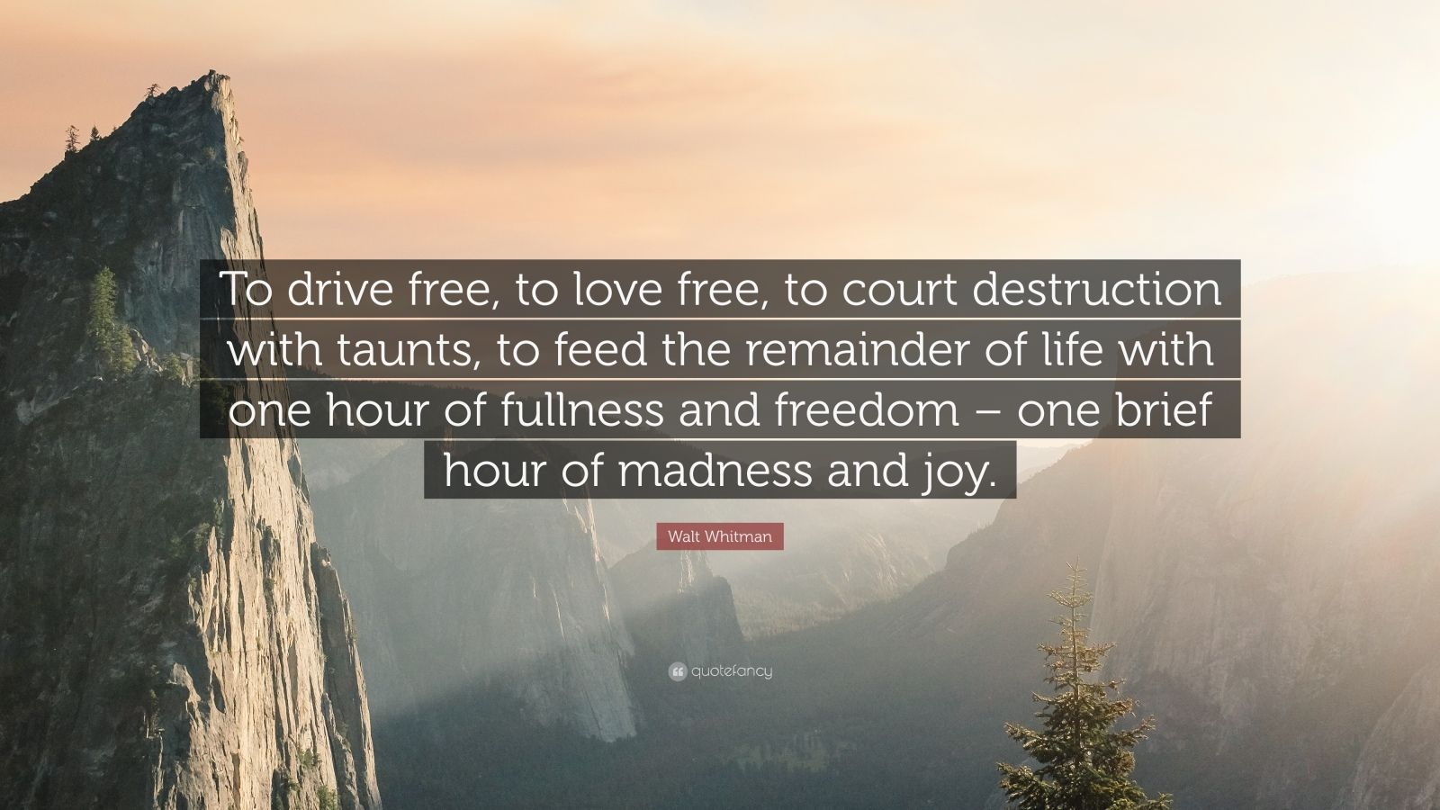 """Walt Whitman Quote: """"To drive free, to love free, to court destruction with taunts, to feed the remainder of life with one hour of fullness and freedom – one brief hour of madness and joy."""""""