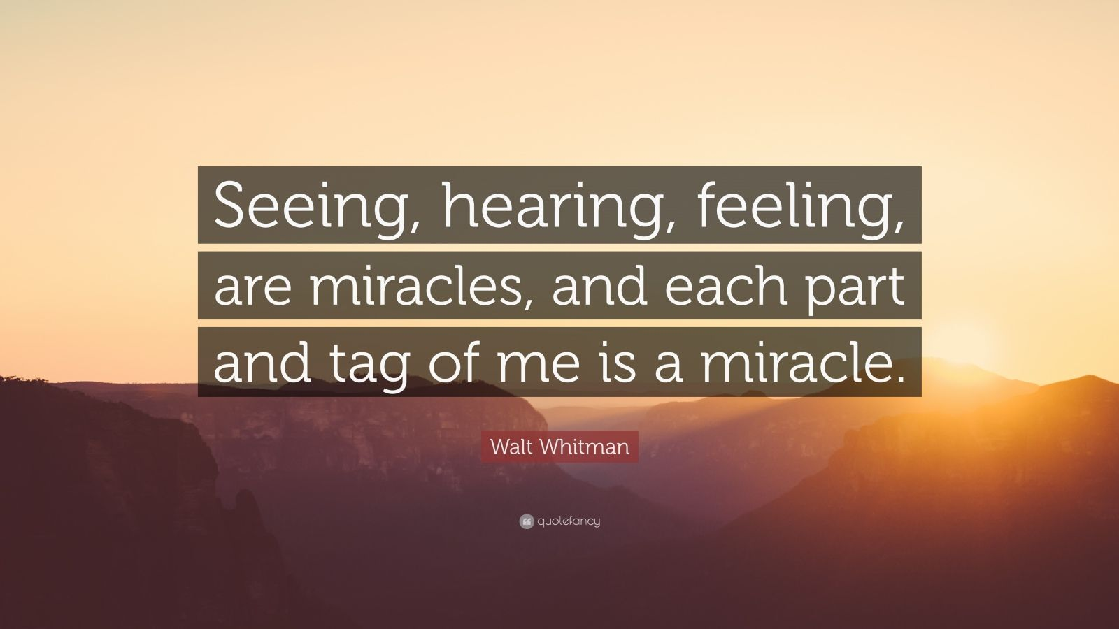 """Walt Whitman Quote: """"Seeing, hearing, feeling, are miracles, and each part and tag of me is a miracle."""""""