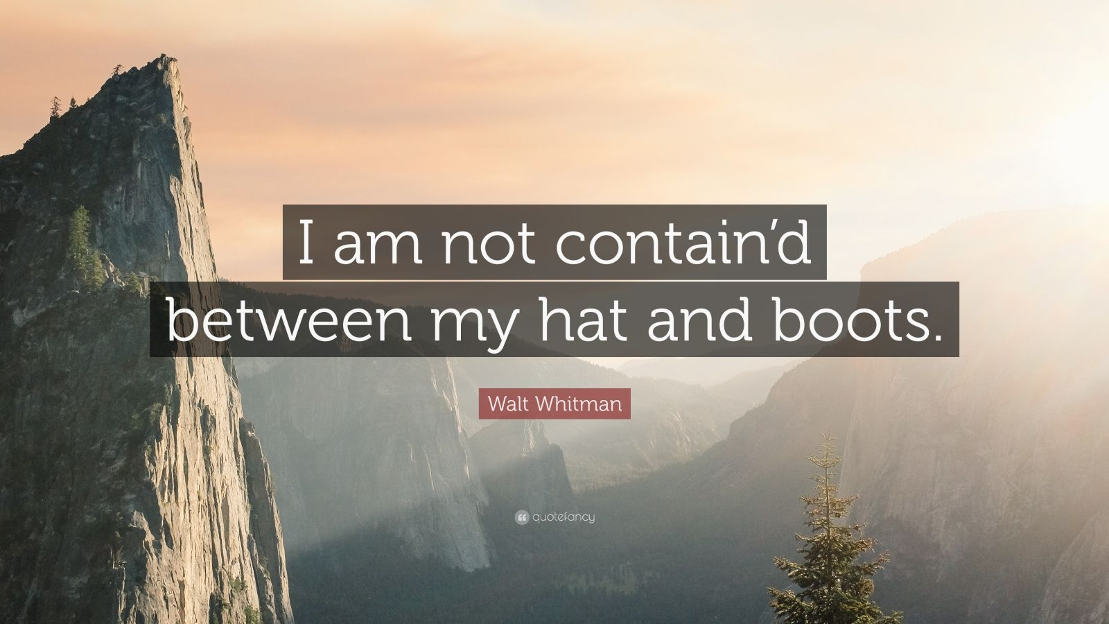 "Walt Whitman Quote: ""I am not contain'd between my hat and boots."""