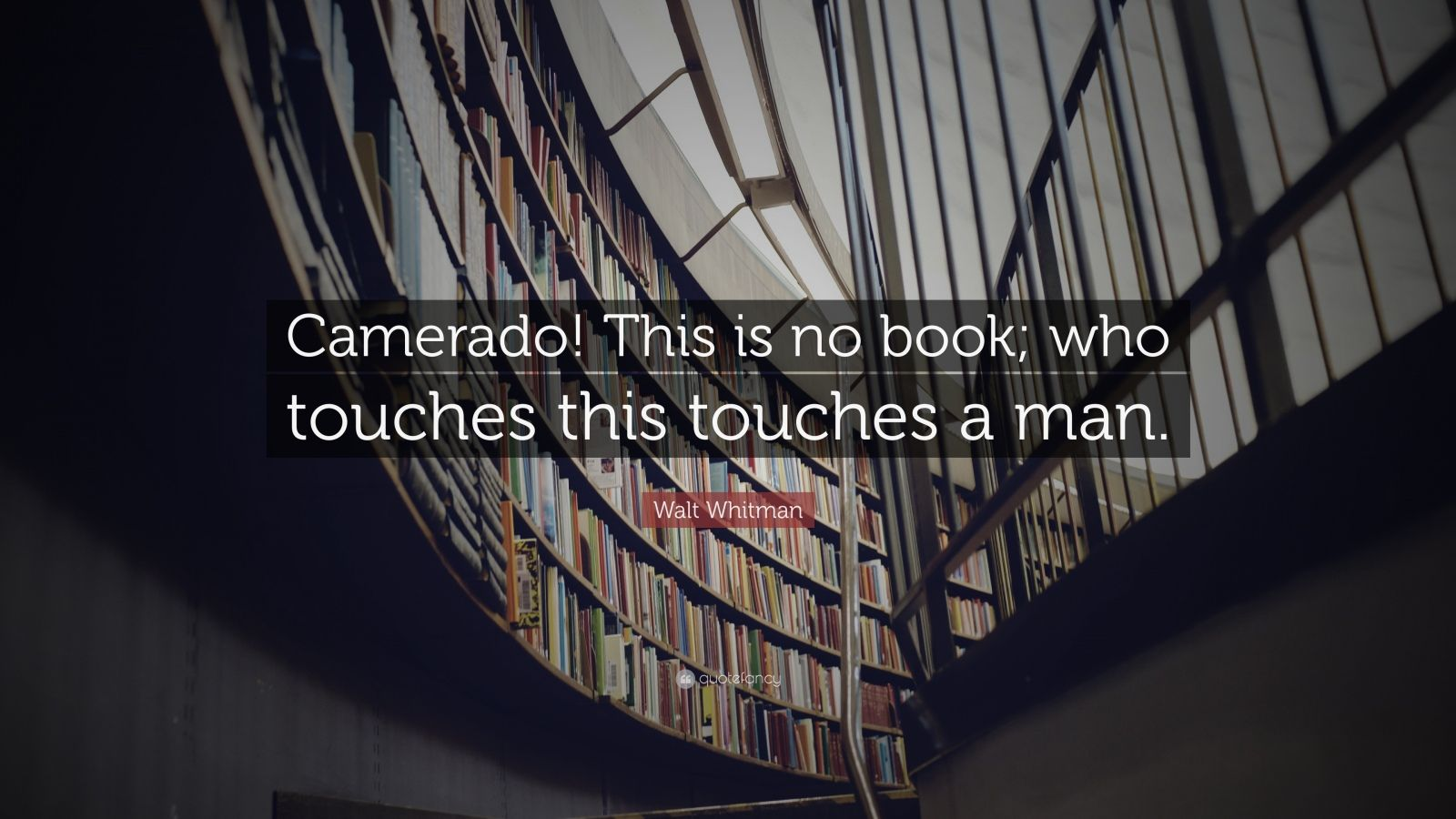 "Walt Whitman Quote: ""Camerado! This is no book; who touches this touches a man."""