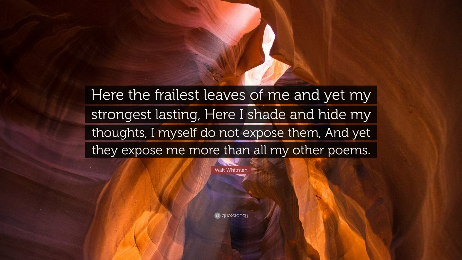 """Walt Whitman Quote: """"Here the frailest leaves of me and yet my strongest lasting, Here I shade and hide my thoughts, I myself do not expose them, And yet they expose me more than all my other poems."""""""