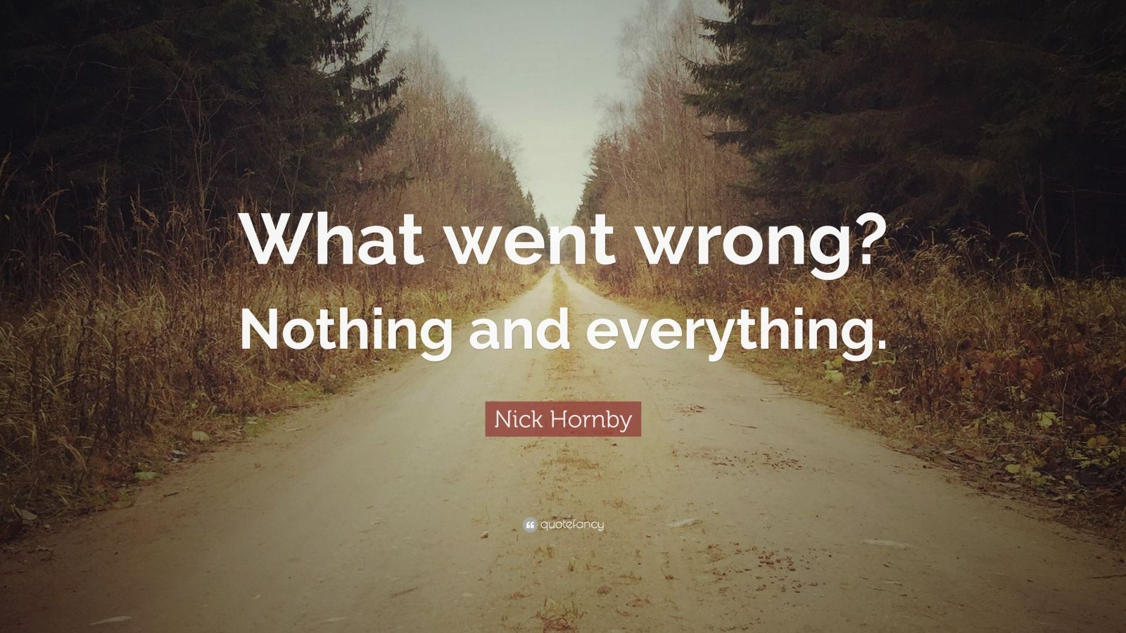 "Nick Hornby Quote: ""What went wrong? Nothing and everything."""