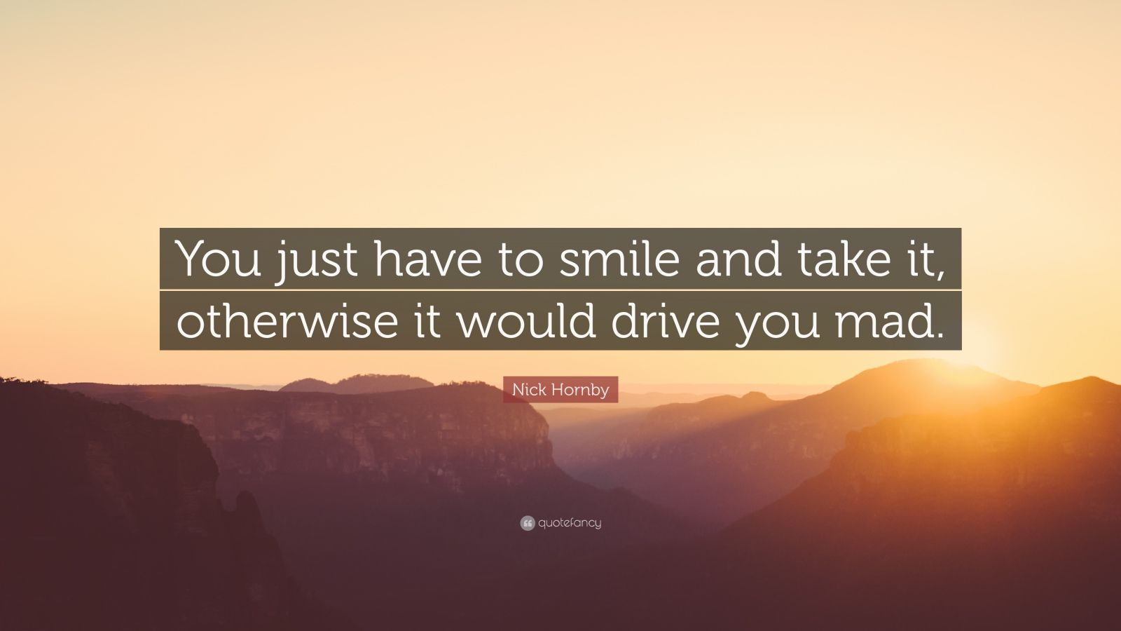 """Nick Hornby Quote: """"You just have to smile and take it, otherwise it would drive you mad."""""""