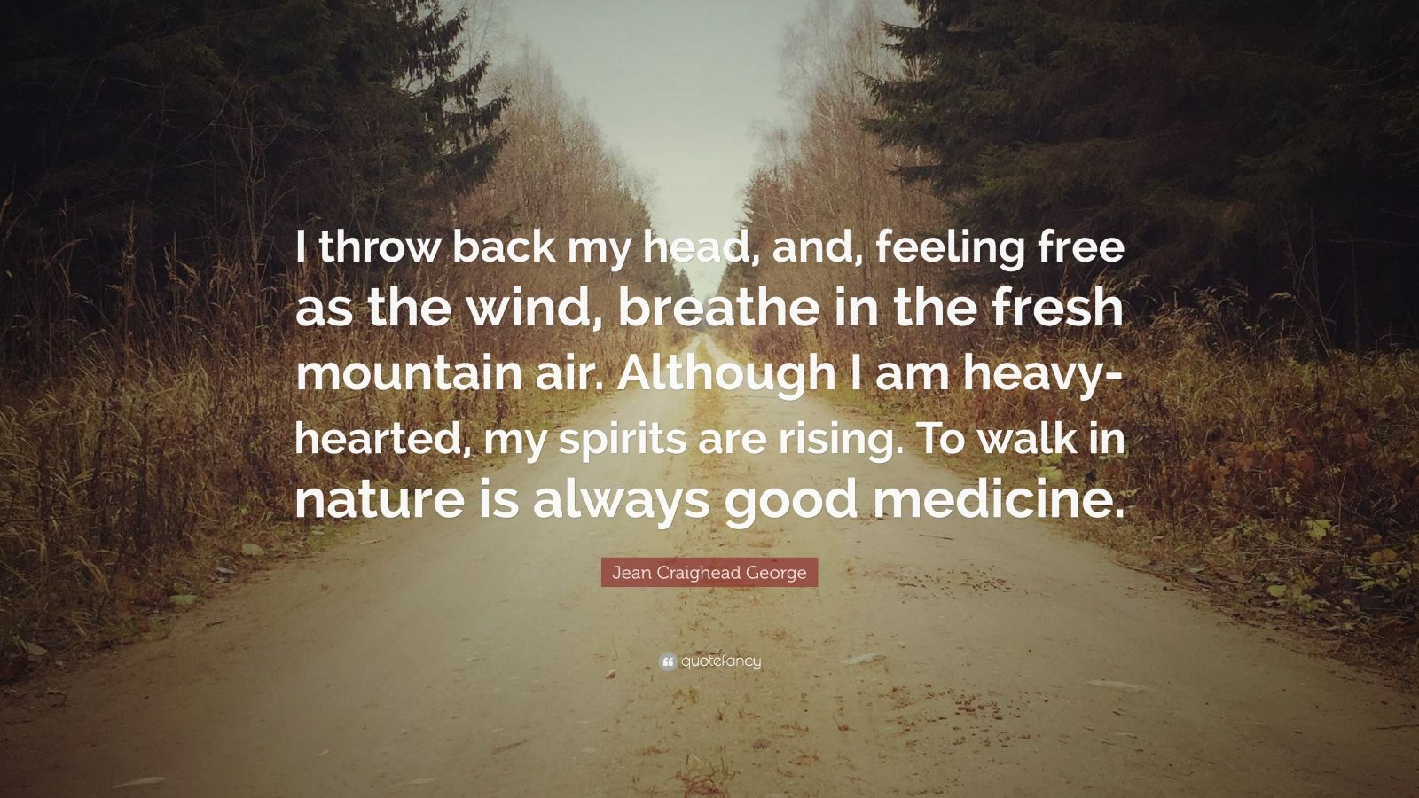 """Jean Craighead George Quote: """"I throw back my head, and, feeling free as the wind, breathe in the fresh mountain air. Although I am heavy-hearted, my spirits are rising. To walk in nature is always good medicine."""""""