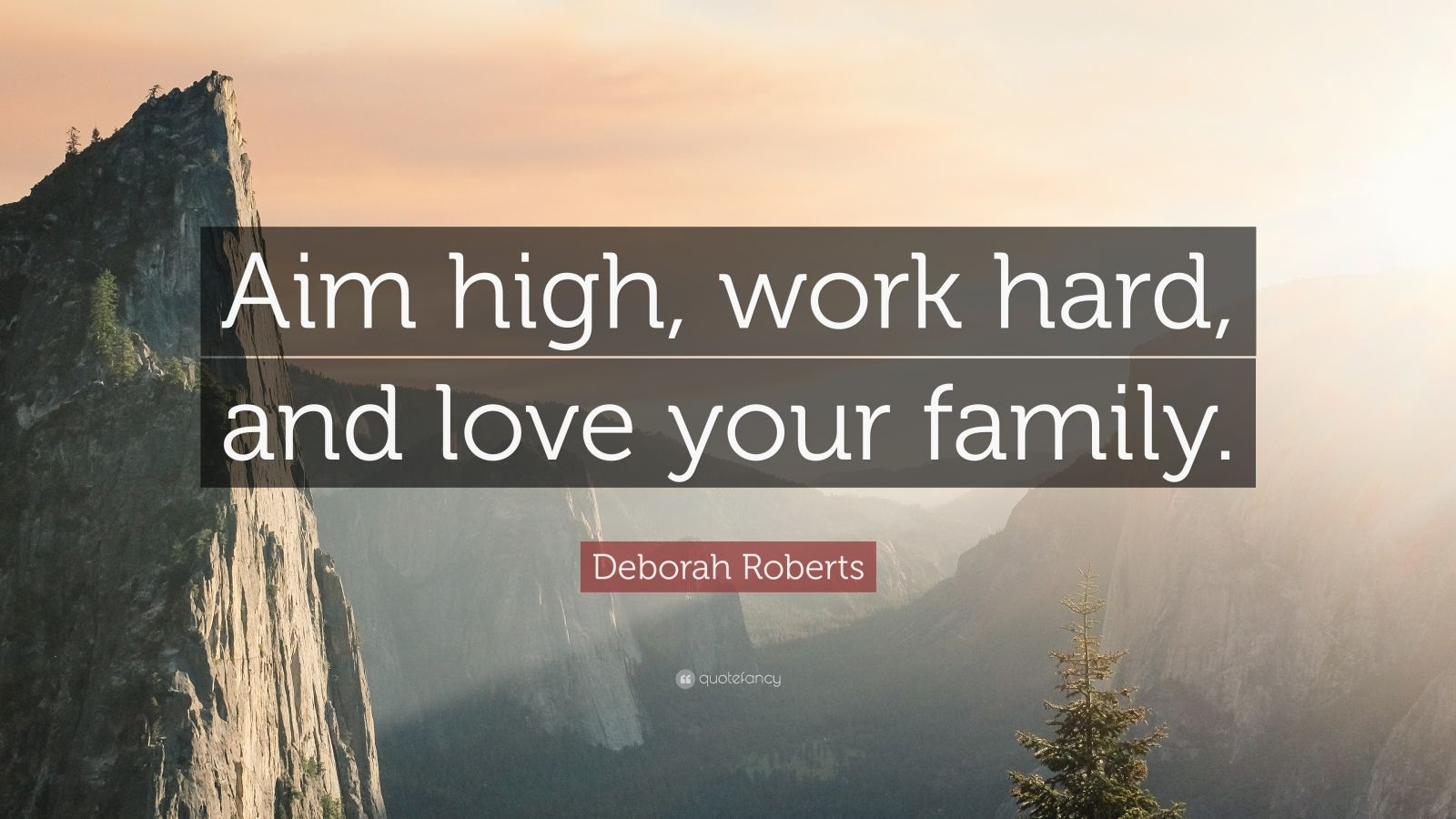 "Deborah Roberts Quote: ""Aim high, work hard, and love your family."""