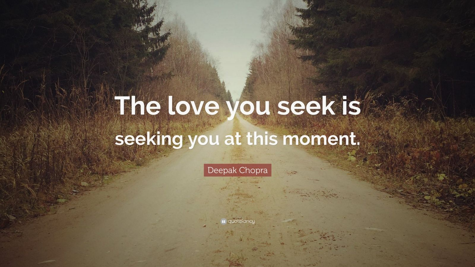 "Deepak Chopra Quote: ""The love you seek is seeking you at this moment."""