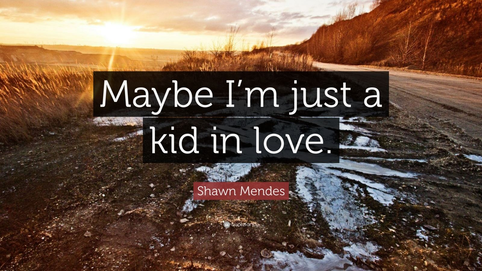 "Shawn Mendes Quote: ""Maybe I'm just a kid in love."""
