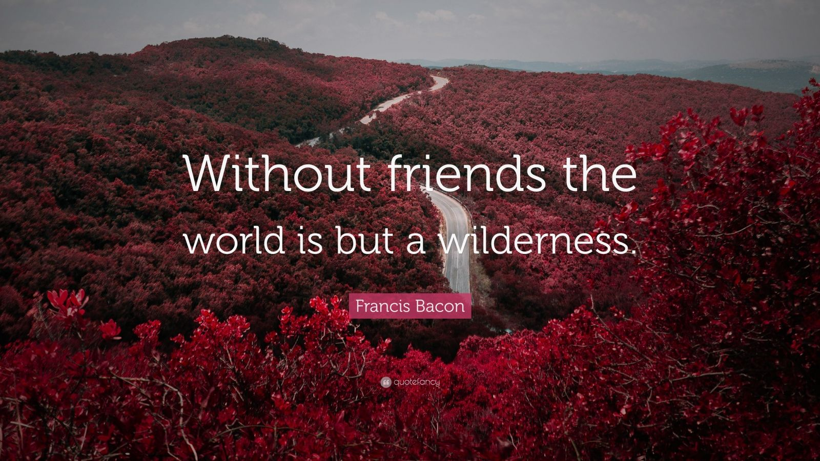 "Francis Bacon Quote: ""Without friends the world is but a wilderness."""