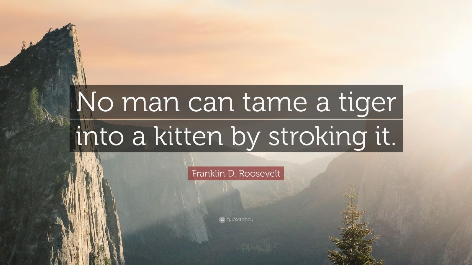 "Franklin D. Roosevelt Quote: ""No man can tame a tiger into a kitten by stroking it."""
