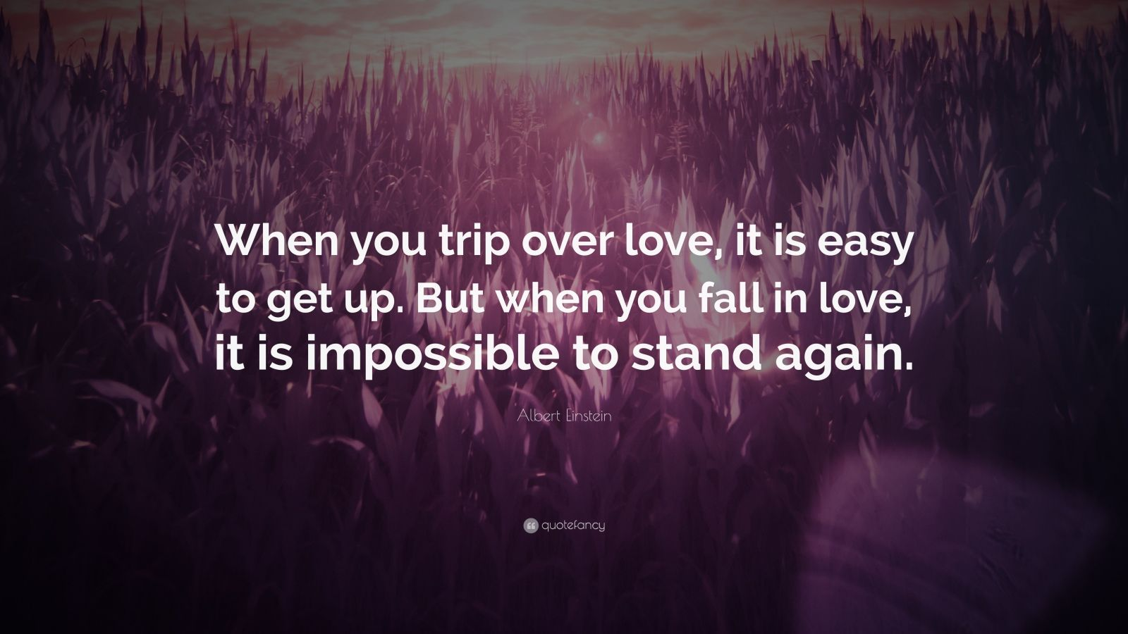 """Albert Einstein Quote: """"When you trip over love, it is easy to get up. But when you fall in love, it is impossible to stand again."""""""