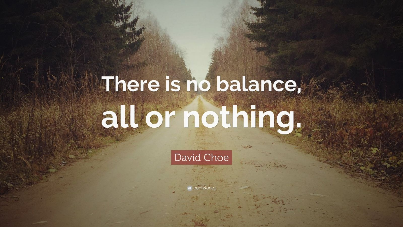 """David Choe Quote: """"There is no balance, all or nothing."""""""