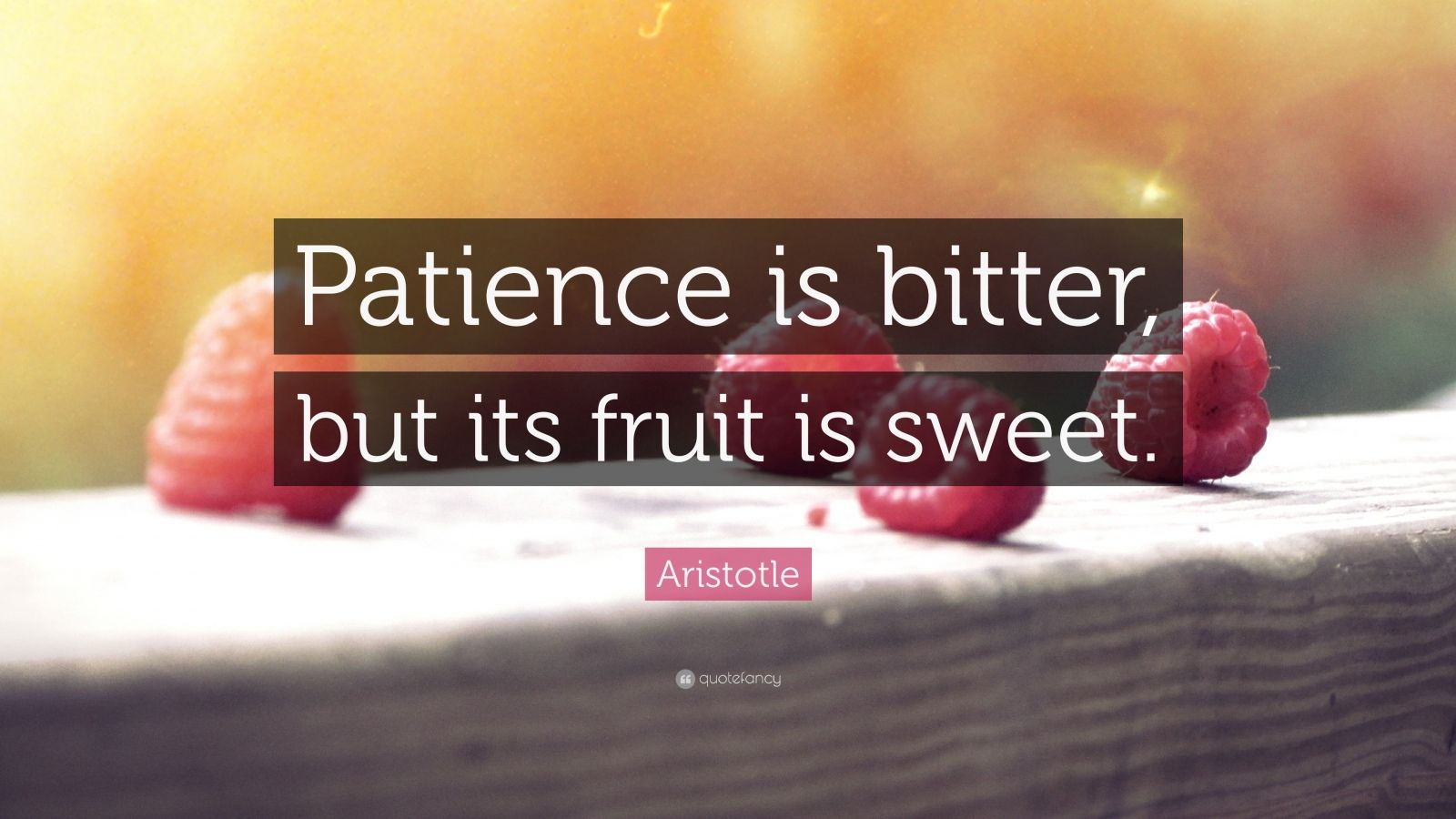 "Aristotle Quote: ""Patience is bitter, but its fruit is sweet."""