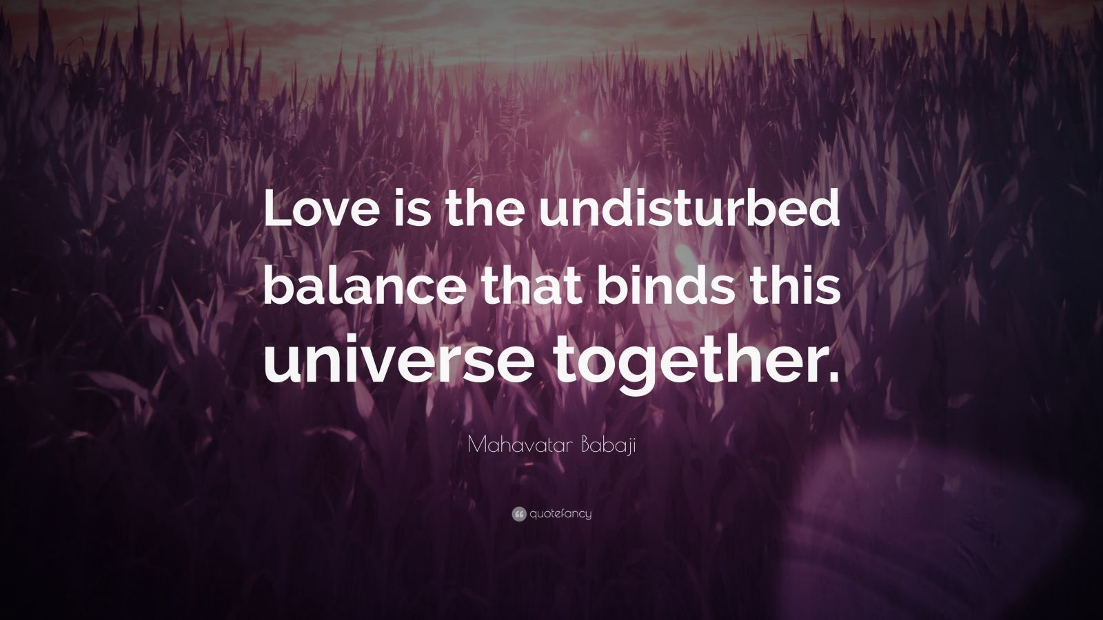 """Mahavatar Babaji Quote: """"Love is the undisturbed balance that binds this universe together."""""""