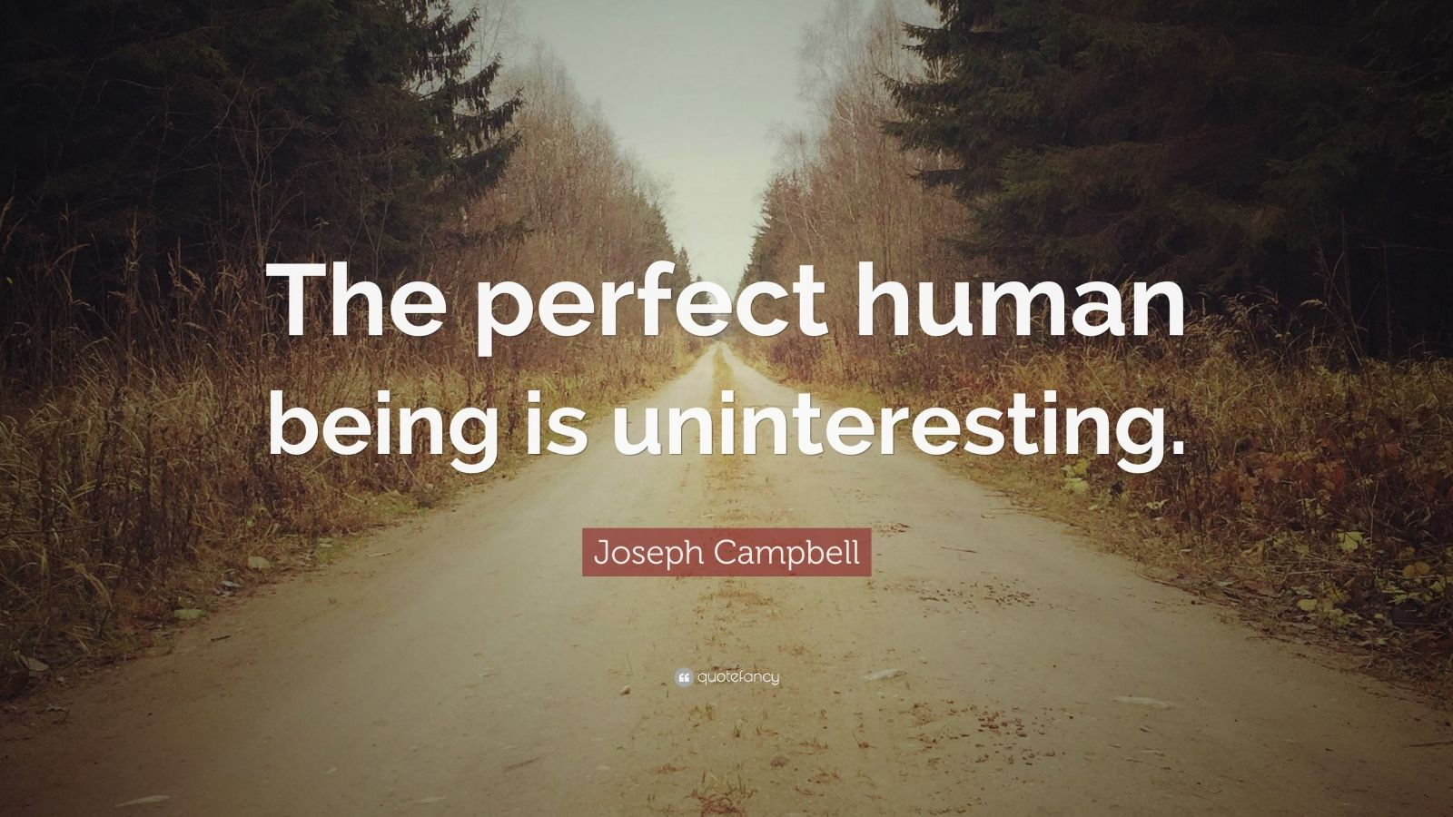 "Joseph Campbell Quote: ""The perfect human being is uninteresting."""