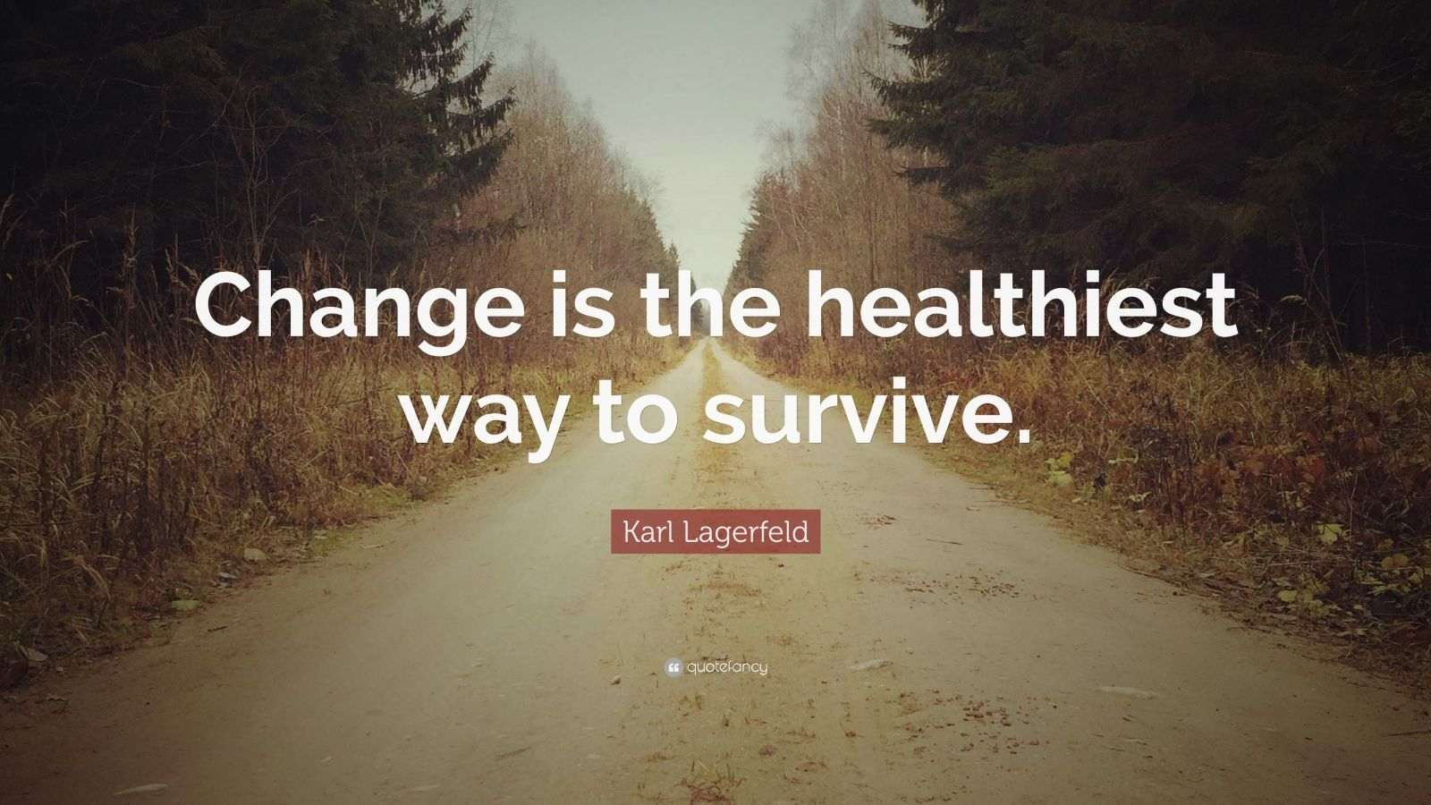 """Karl Lagerfeld Quote: """"Change is the healthiest way to survive."""""""