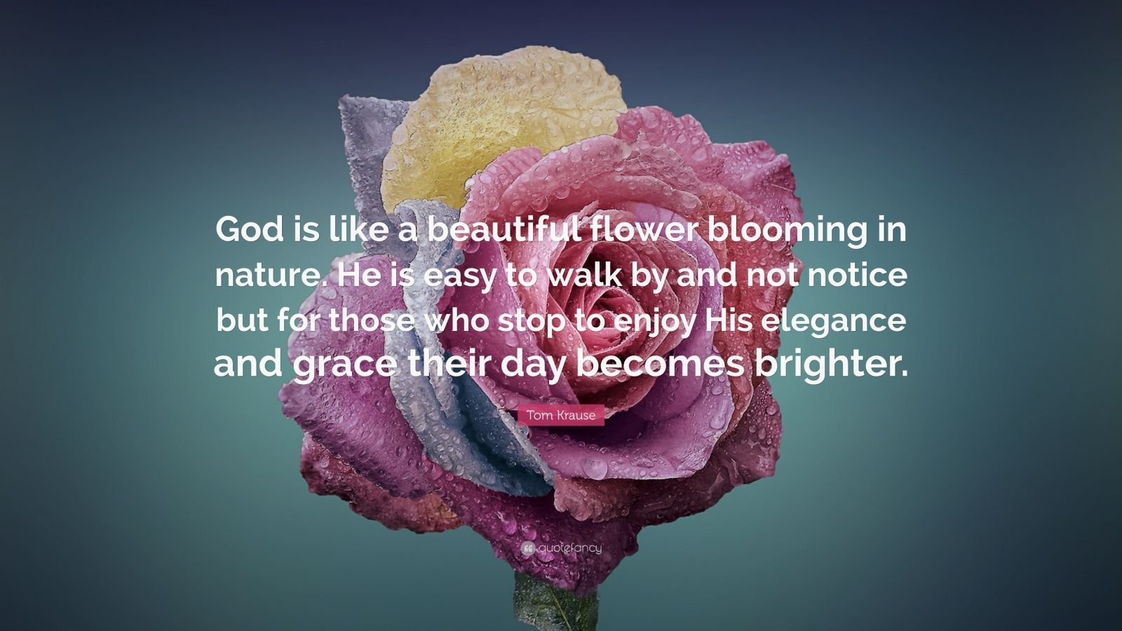 """Tom Krause Quote: """"God is like a beautiful flower blooming in nature. He is easy to walk by and not notice but for those who stop to enjoy His elegance and grace their day becomes brighter."""""""