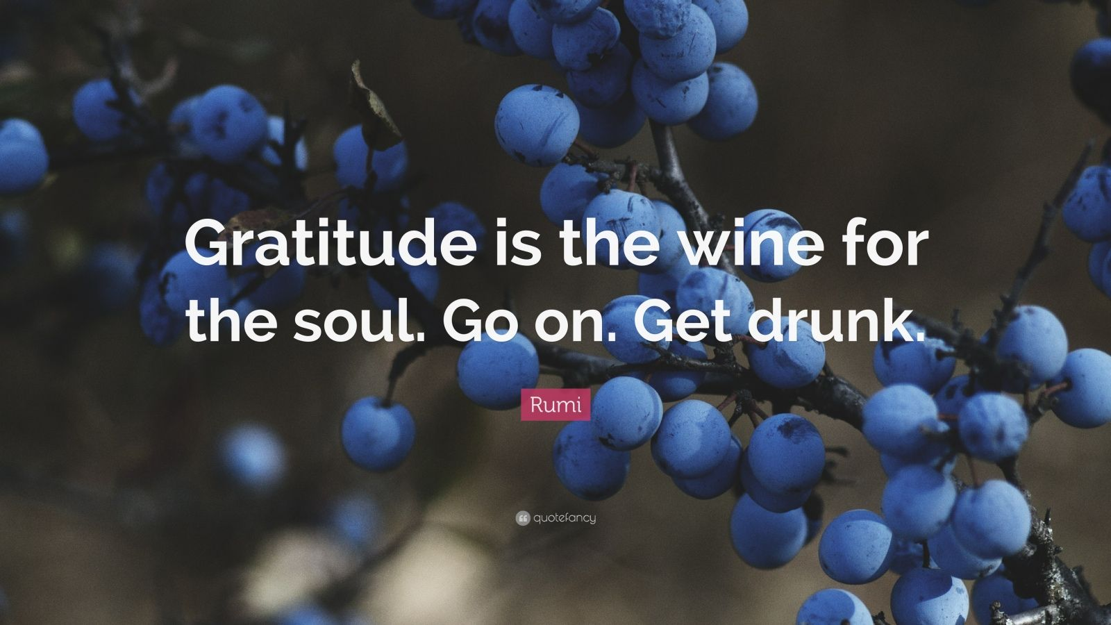 """Rumi Quote: """"Gratitude is the wine for the soul. Go on. Get drunk."""""""