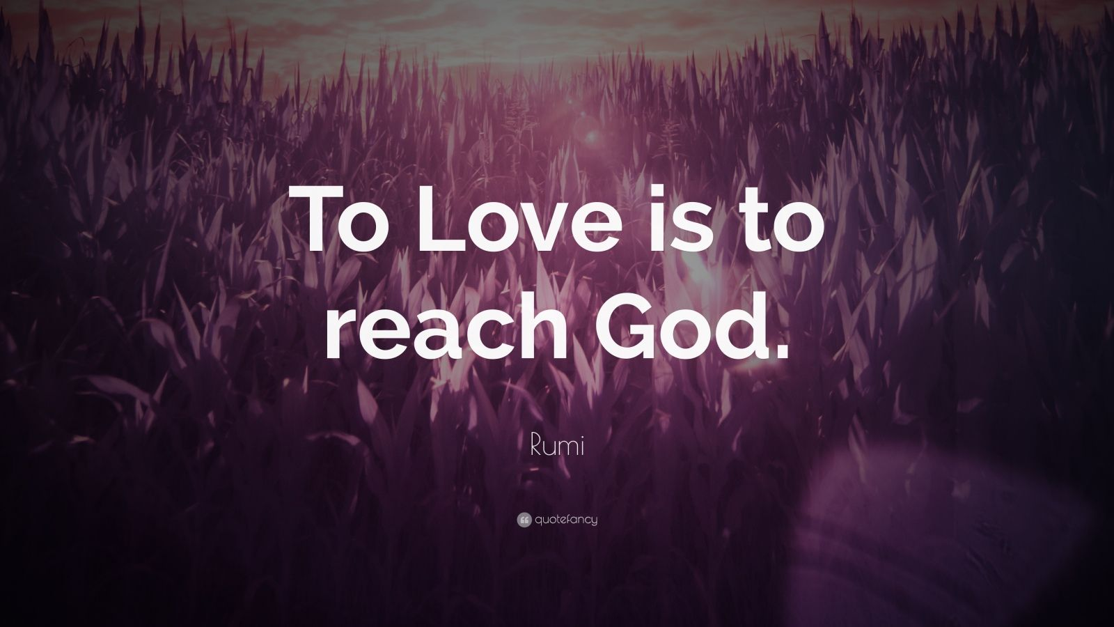 """Rumi Quote: """"To Love is to reach God."""" (17 wallpapers ..."""