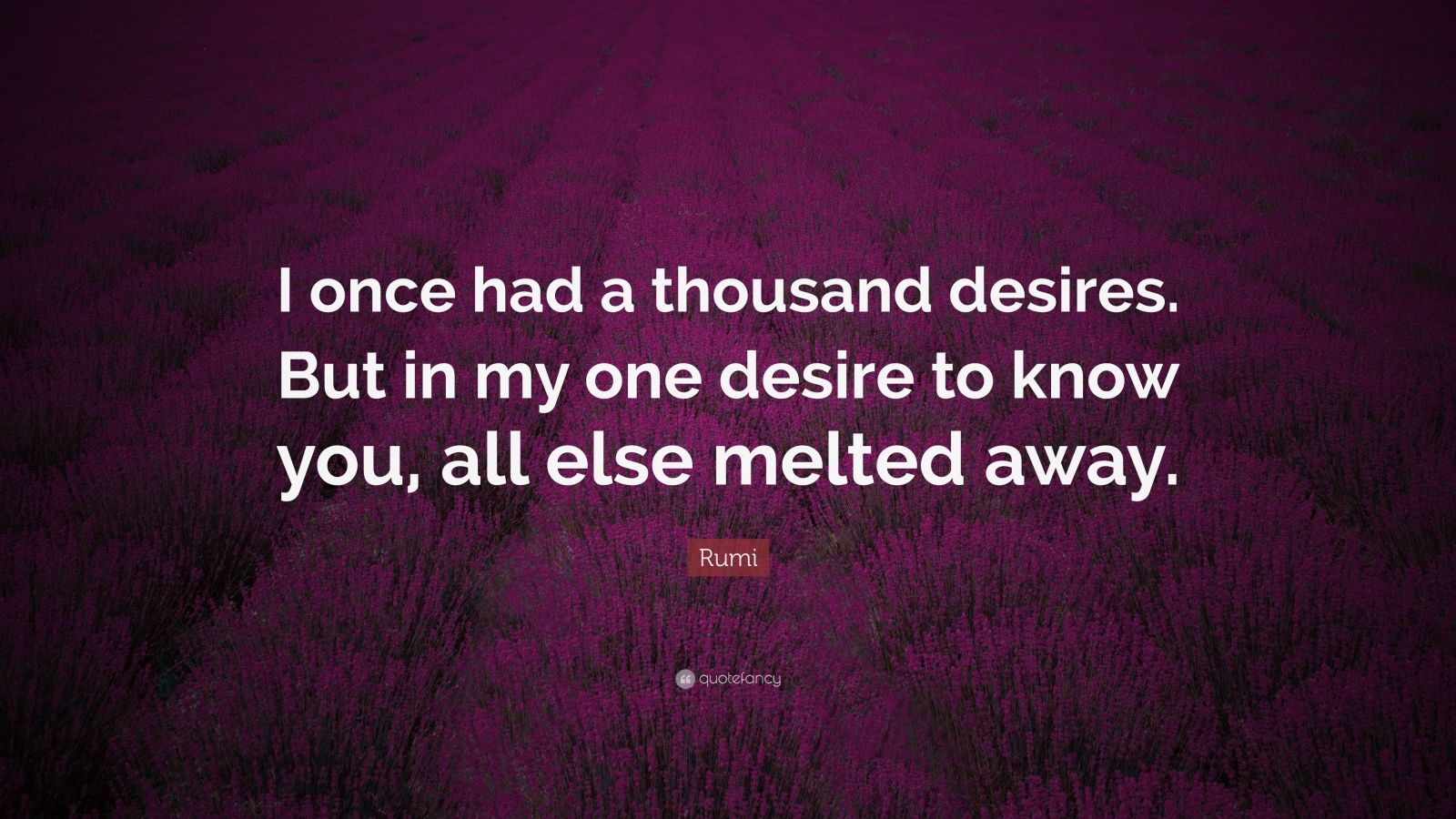 "Rumi Quote: ""I once had a thousand desires. But in my one desire to know you, all else melted away."""